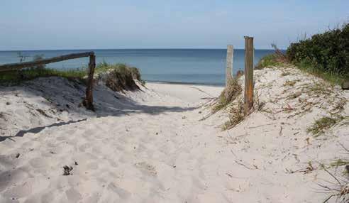 7. Insel Usedom 8 Tage | 16. 5. – 23. 5. 2020 | Himmelfahrt